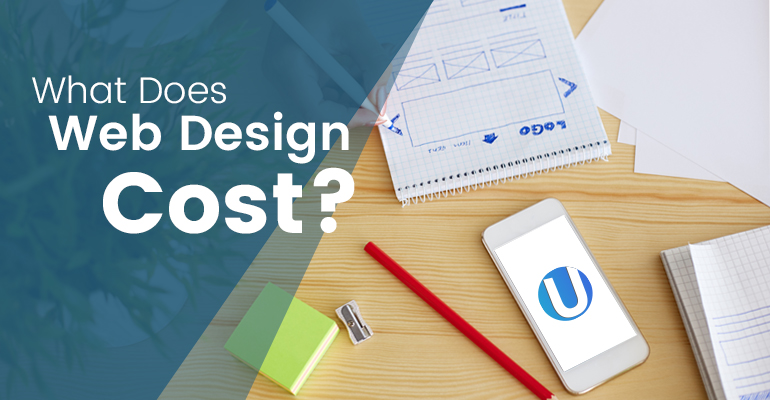 what does website design cost