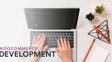 WordPress WooCommerce Developer