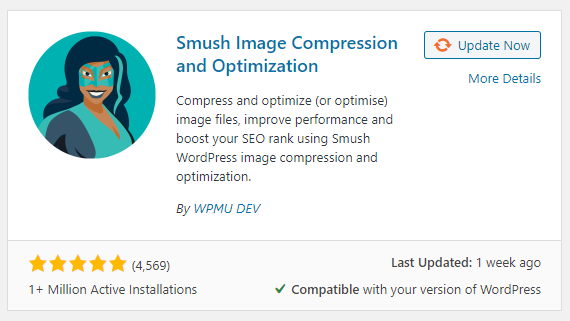 WordPress Web Design Boca Raton - Smush - By WPMU DEV