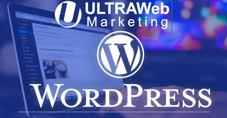 WordPress Web Designs